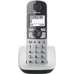 Panasonic - KX-TGE510JTS argento