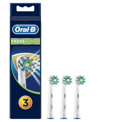 ORAL B - TESTINE EB50-3 CROSSACTION